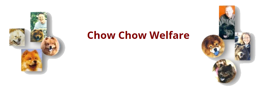 Chowwelfare transparent 2
